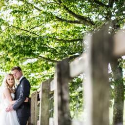 bride and groom under tree at aalmonry barn wedding