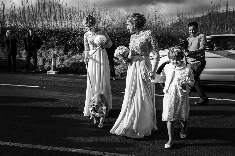 bridesmaids and dog wedding ceremony in west wales church