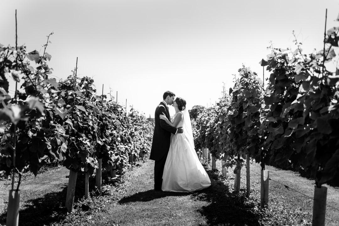 Llanerch-Vineyard-310715-040