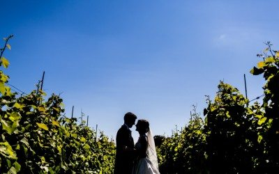 Llanerch Vineyard Wedding, South Wales – Manon & Geraint
