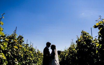 Llanerch Vineyard Wedding, South Wales – Manon & Geraint