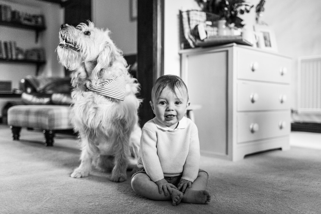 baby portrait with dog