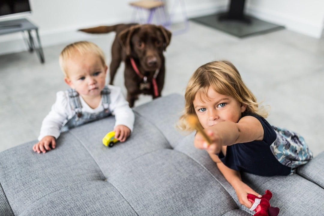 boy toddler and little girl with dog