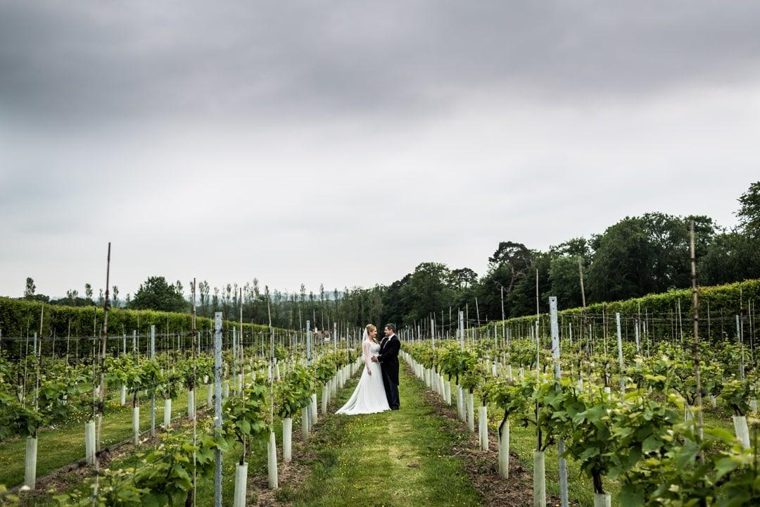 Llanerch-Vineyard-Wedding-040616034