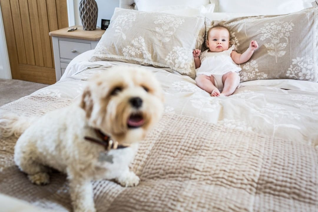 children and dog photography