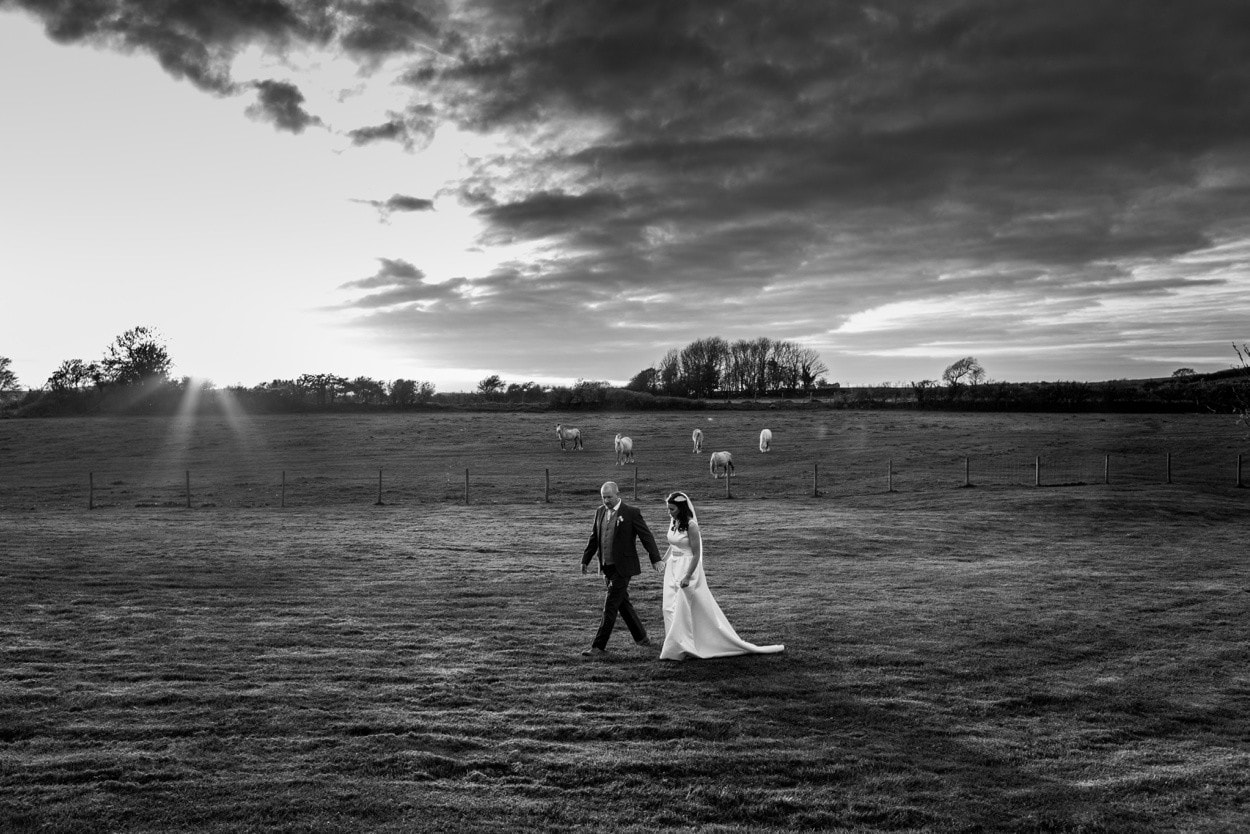 Bride and groom portraits at Oldwalls in evening sun