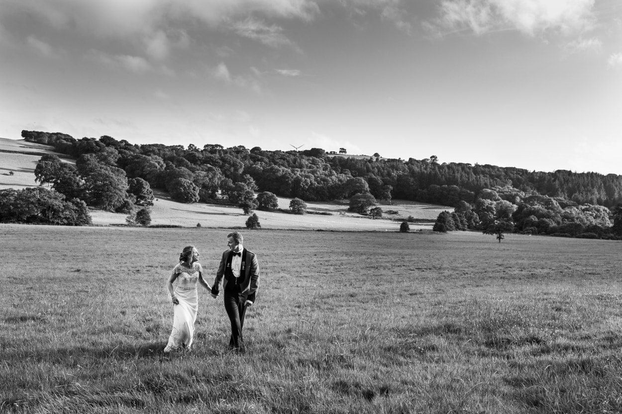Wedding at Nanteos in Mid Wales