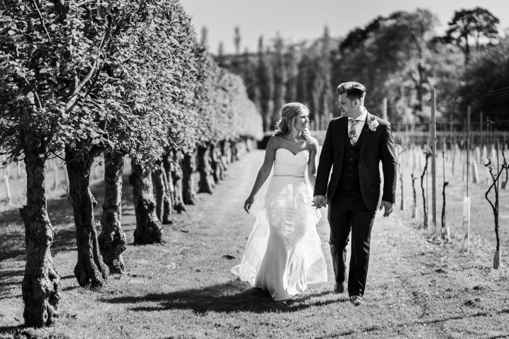 Bride and groom portraits at Llanerch Vineyard wedding reception