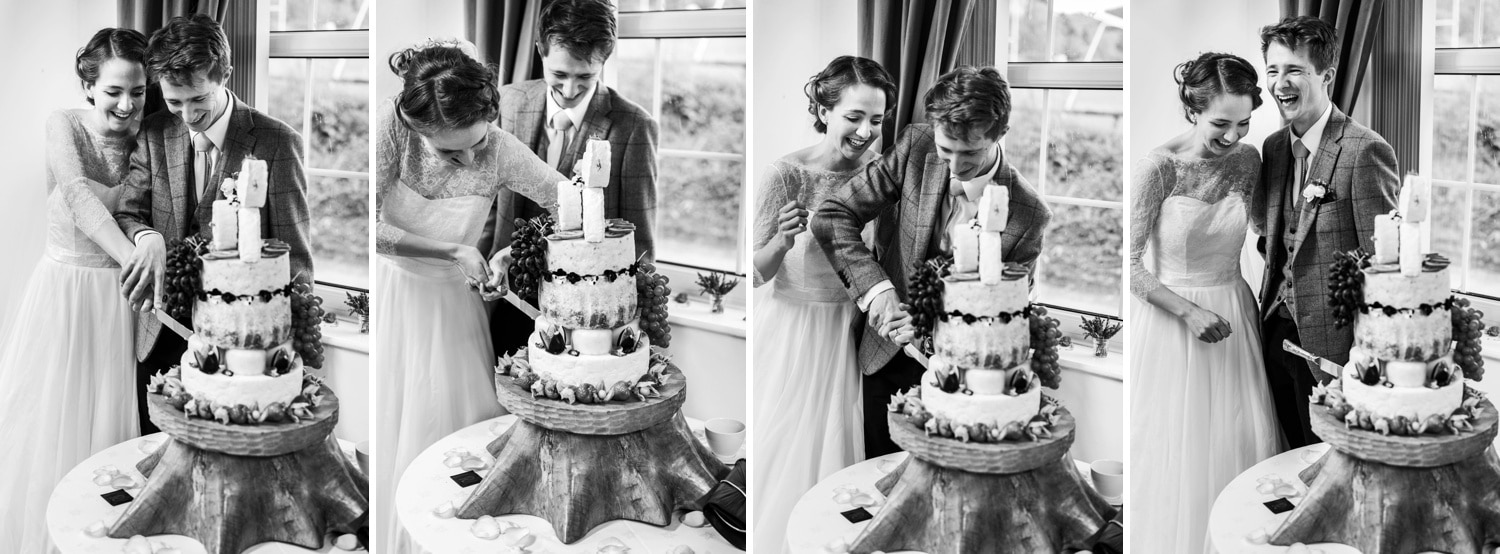 Cake cutting at Village hall wedding reception in Monmouthshire