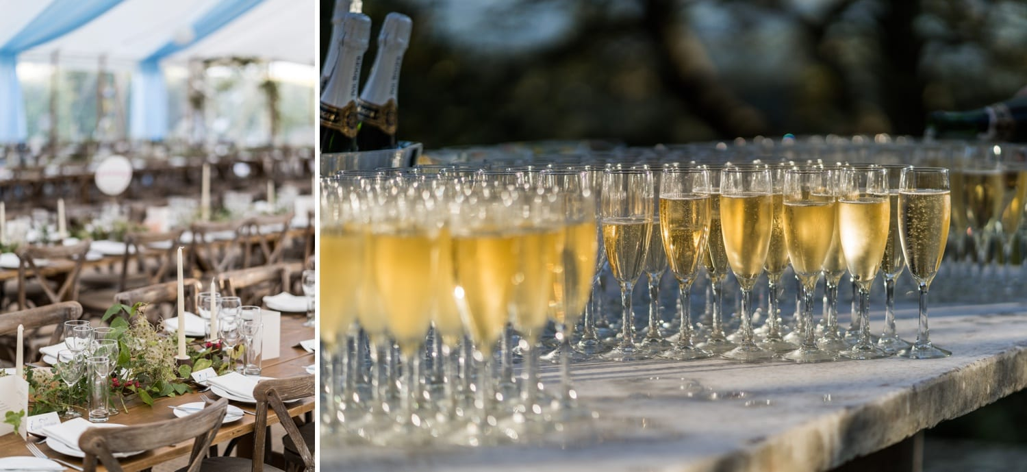 Champagne glasses for wedding reception