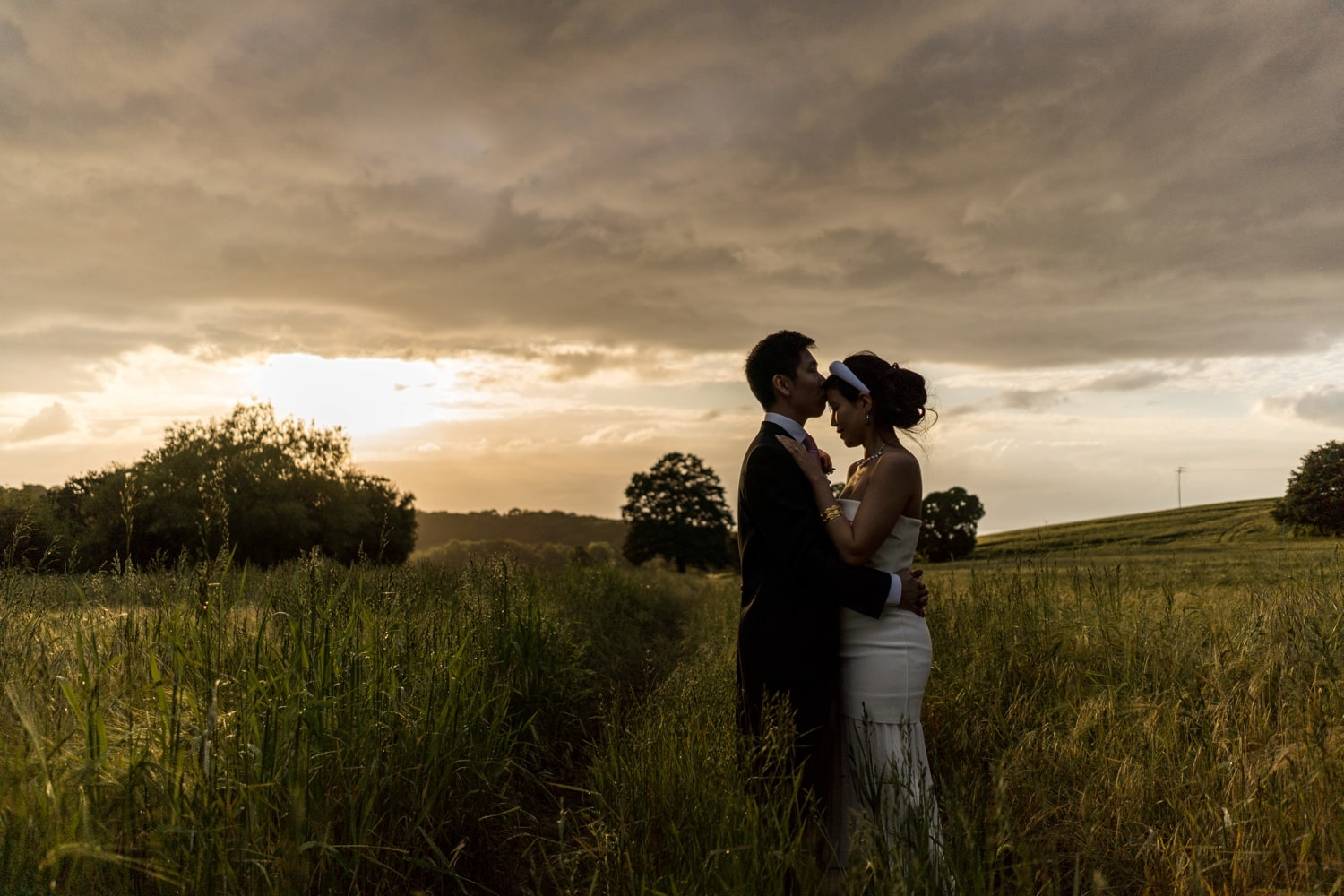 Sunset at a at St Audries Park wedding