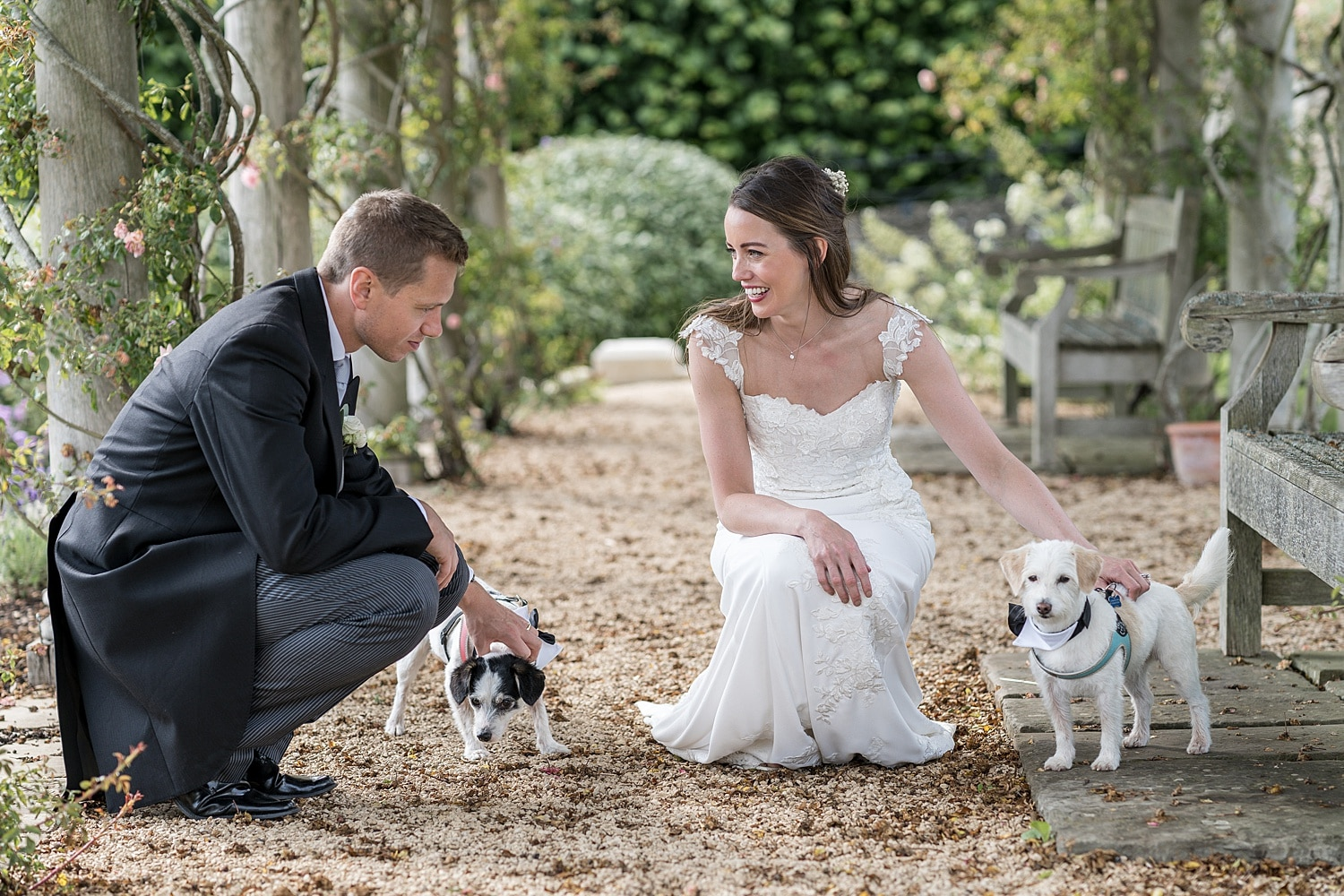Bride and groom portraits at Euridge Orangery with dogs
