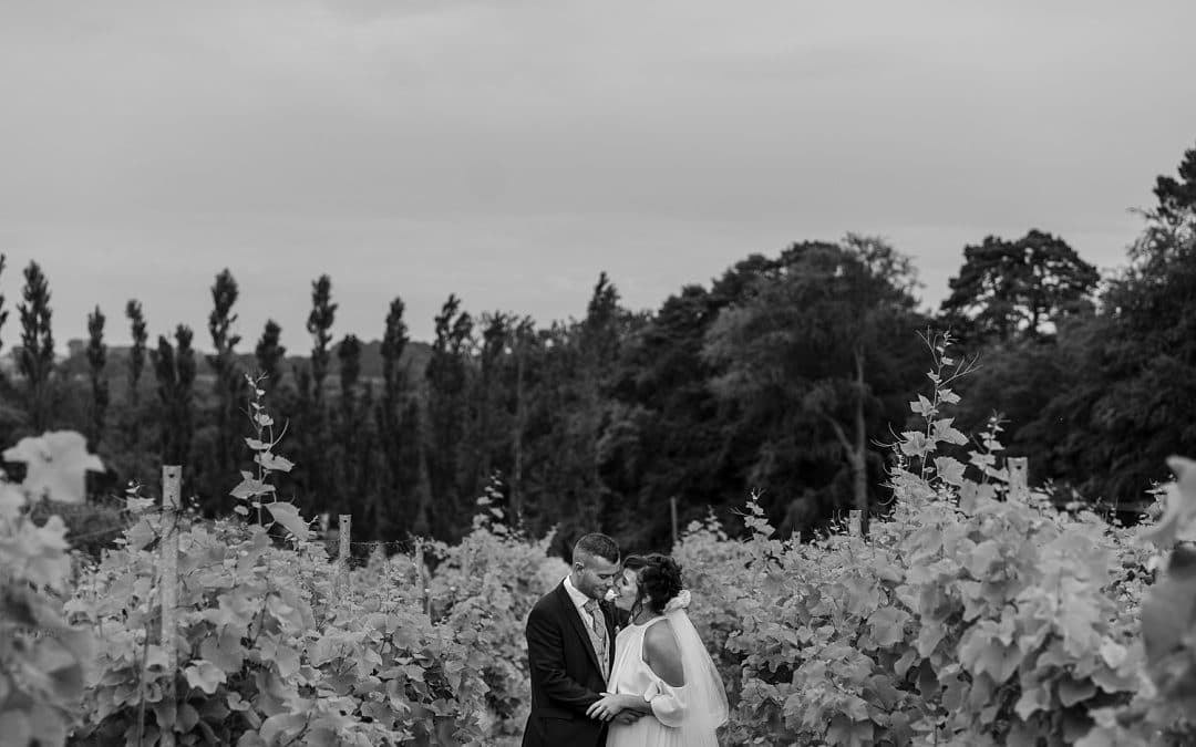 Summer Wedding at Llanerch Vineyard – Kate & David