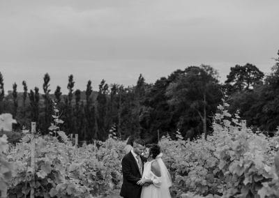 Summer Wedding at Llanerch Vineyard – Kate & David